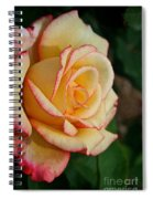 Dream Come True Grandiflora Spiral Notebook