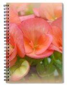 Dreamy Begonias Spiral Notebook