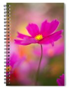 Dreamy Cosmos Spiral Notebook