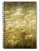 Dreamy Daises Spiral Notebook