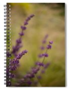 Dreamy Purple Spiral Notebook