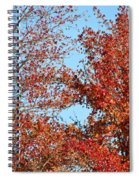 Dressed For Autumn Spiral Notebook