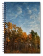 Dressed In Autumn Colors Spiral Notebook
