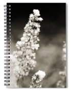 Dried Flower And Crystals 2 Spiral Notebook