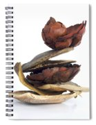 Dried Pieces Of Vegetables Spiral Notebook