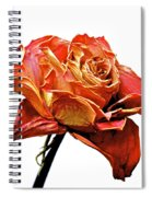 Dried Rose Spiral Notebook