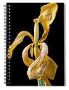 Dried Tulip Spiral Notebook