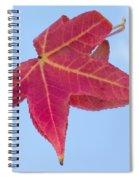 Drifting Falling Spiral Notebook