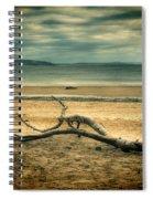 Driftwood 1 Lomo Spiral Notebook