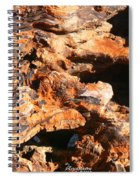 Driftwood 2 Spiral Notebook
