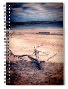 Driftwood 2 Lomo Spiral Notebook