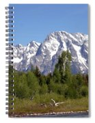 Driftwood And The Grand Tetons Spiral Notebook