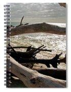 Driftwood Jungle II Spiral Notebook