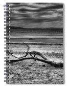 Driftwood Mono Spiral Notebook