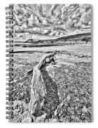 Driftwood Sketch Spiral Notebook