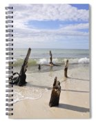 Driftwood Stands Watch Spiral Notebook
