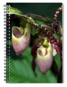 Drippy Lady Slipper Orchids Spiral Notebook