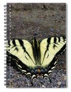 Driveway Butterfly Spiral Notebook