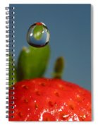 Droplet Falling On A Strawberry Spiral Notebook
