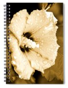 Droplets In Sepia Spiral Notebook