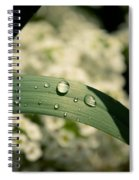 Droplets Spiral Notebook