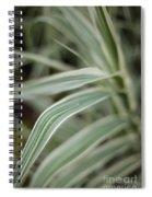 Drops Of Grass Symmetry Spiral Notebook