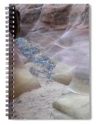 Dry Creek Bed 3 Spiral Notebook