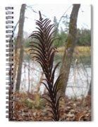 Dry Fern Stem In November Spiral Notebook