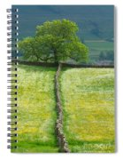 Dry Stone Wall And Lone Tree Spiral Notebook