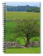 Dry Stone Wall And Twisted Tree Spiral Notebook