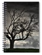 Dry Sunset Spiral Notebook