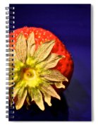 Dry Top Spiral Notebook