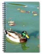 Duck 1 Spiral Notebook