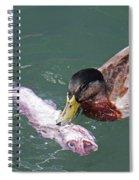 Duck Fishing Spiral Notebook