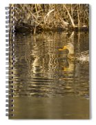Duck Ripples Spiral Notebook