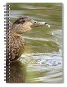 Duck Spits Spiral Notebook