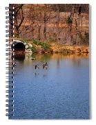 Ducks Flying Over Pond I Spiral Notebook