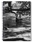 Ducks In The Shade In Black And White Spiral Notebook
