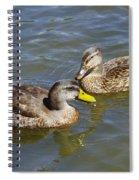 Ducks In The Sun Spiral Notebook