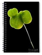Duckweed Lemna Minor Spiral Notebook