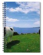 Durrus, Sheeps Head, Co Cork, Ireland Spiral Notebook