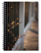 Dusk Grasses Spiral Notebook