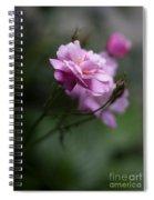 Dusk Light Roses Spiral Notebook