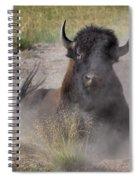 Dust Bunny Spiral Notebook