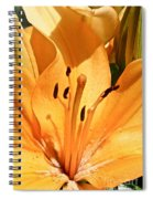 Dusted Spiral Notebook