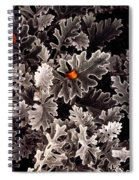 Dusty Miller  Spiral Notebook