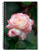 Dusty Pink Spiral Notebook