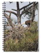 Eagle And Babies Spiral Notebook