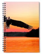 Eagle At Break Of Dawn Spiral Notebook