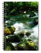 Eagle Creek  Spiral Notebook